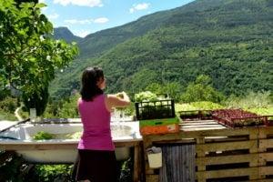 Lavancia Organic Farm