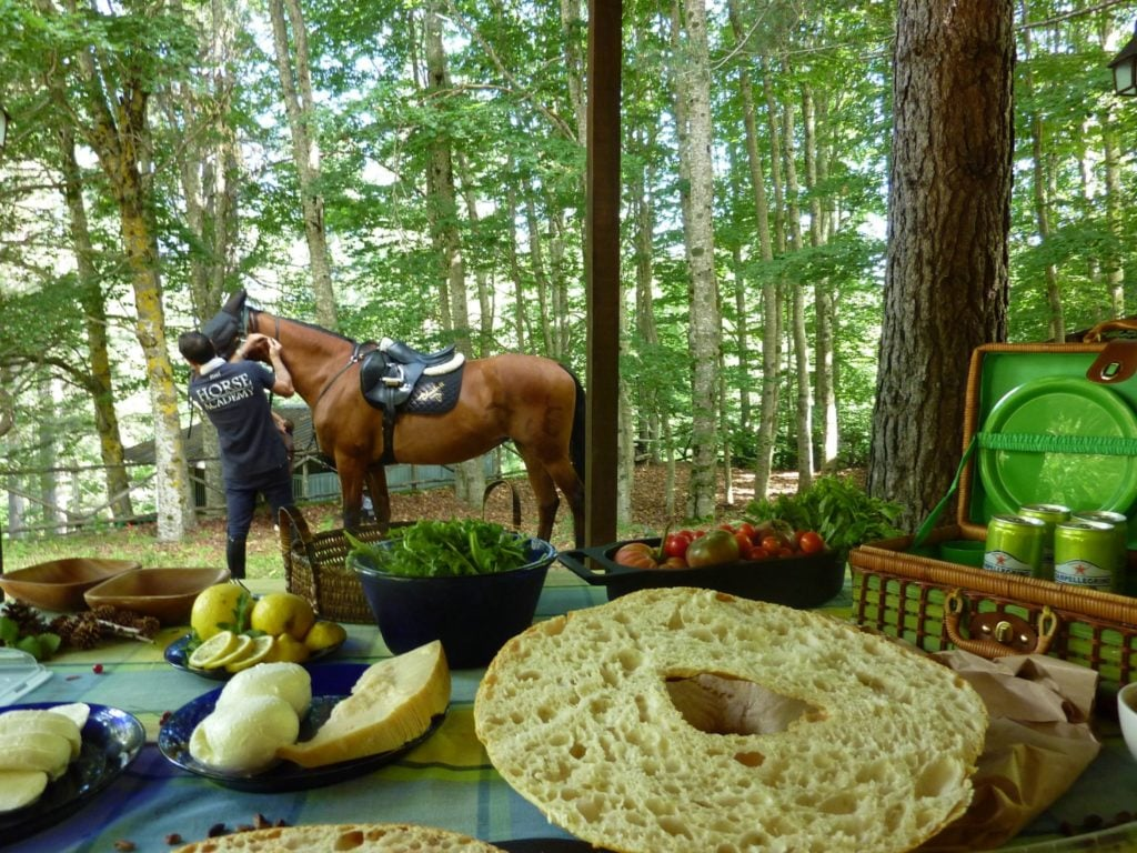 Picnic with horses
