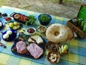 Mid summer picnic 8_1_1