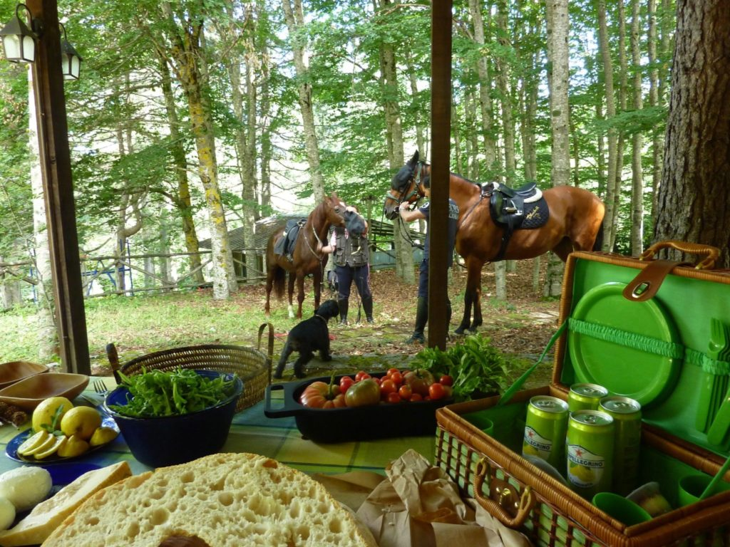Mediterranean picnic with horses