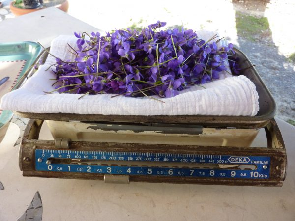 weight homemade crystallized violets recipe