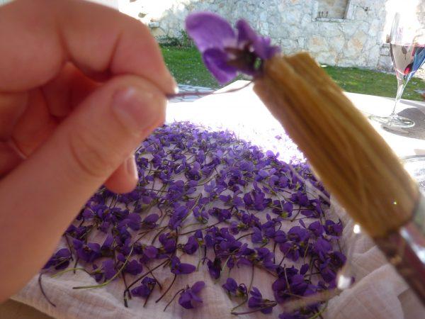 brushing homemade crystallized violets recipe