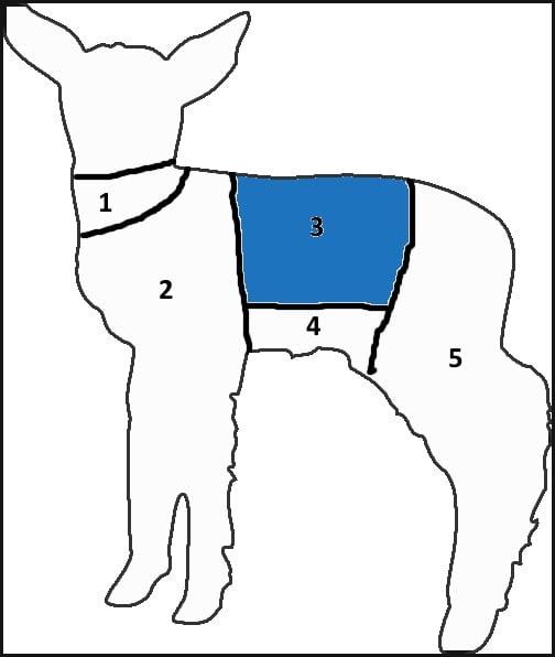 Lamb chart rack