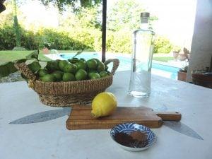 italian liquor Nocino