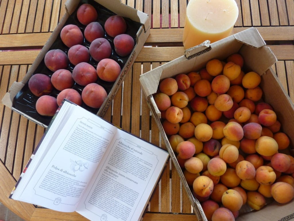 Preserving summer fruits apricots vs peaches