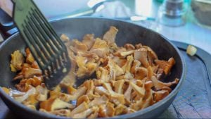 Stir the chanterelle while frying