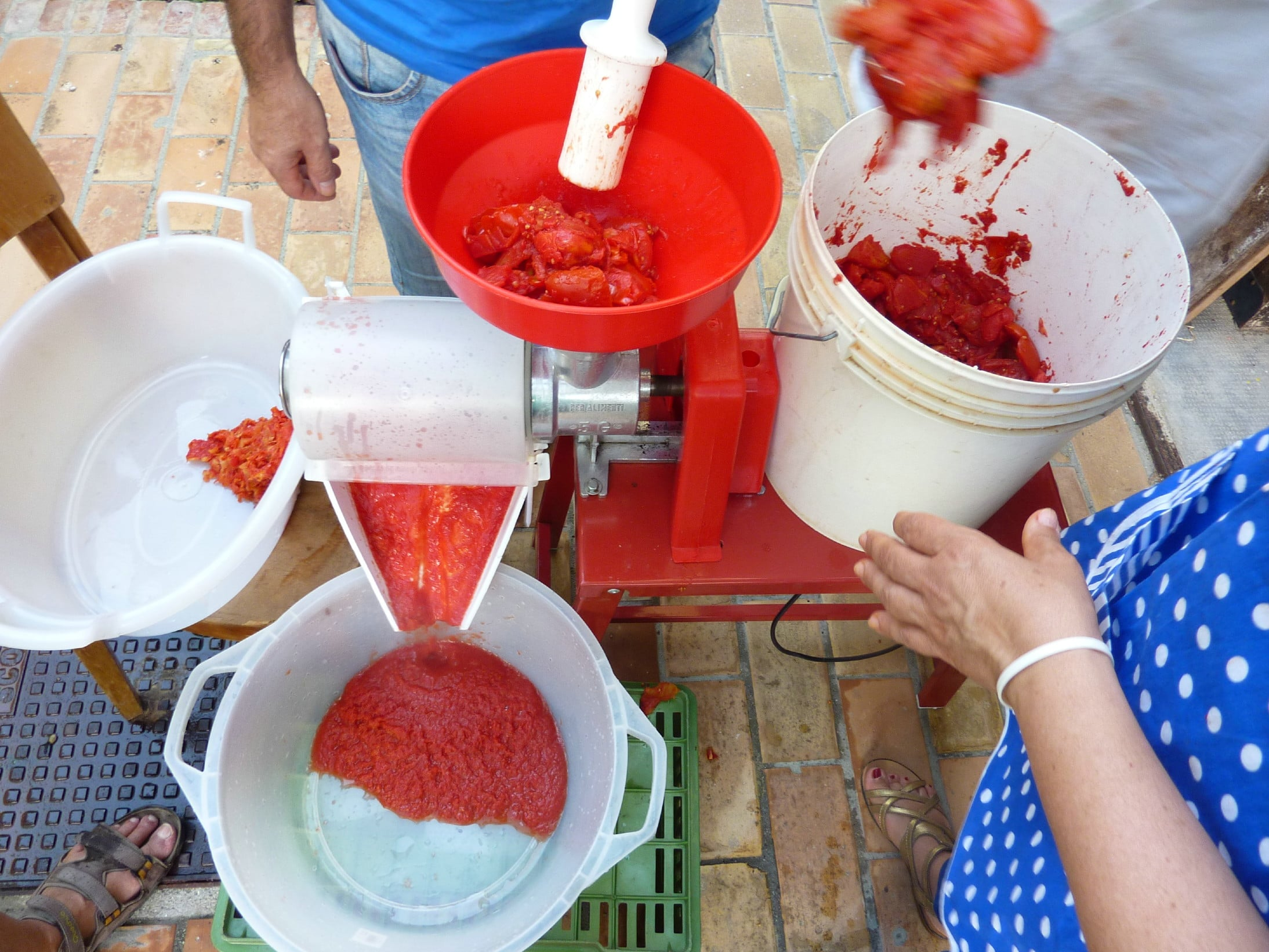 Grinding tomatoes in a grinding machine