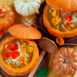 Roast Pumpkin Soup with edible flowers served in a squash