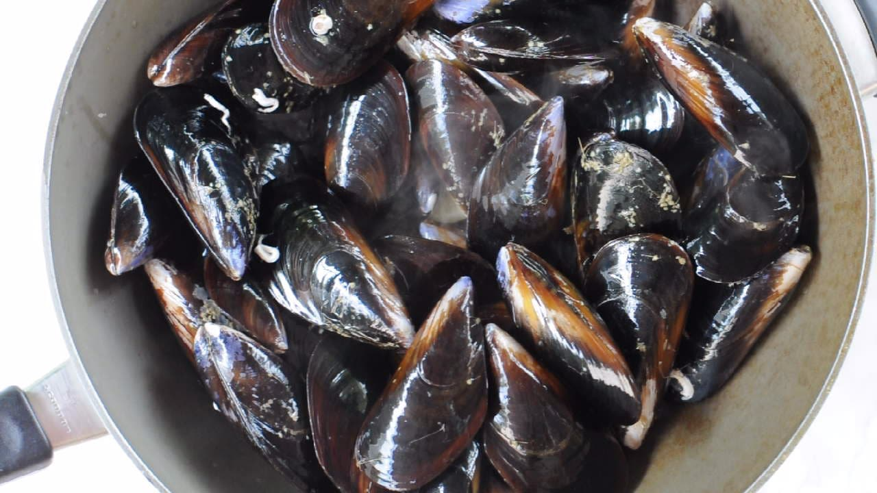 fresh mussels in a pan