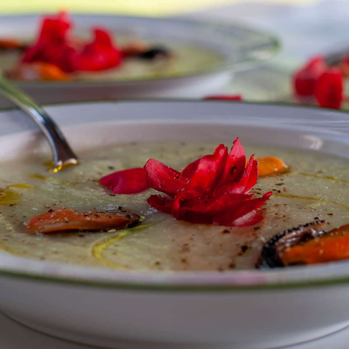 Chayote mousse recipe with Begonia and Mussels on a plate
