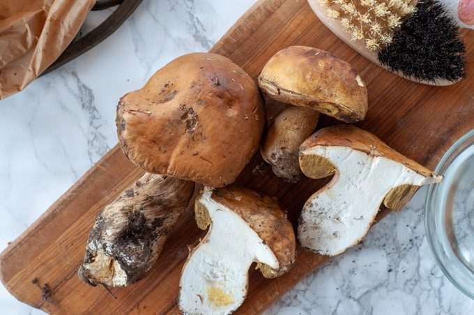 Fresh Porcini mushrooms on a cutting board