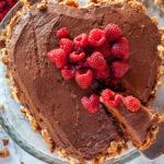 Walnut Dark Chocolate Sponge Cake slice cut
