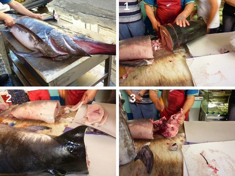 Different cuts of swordfish meat