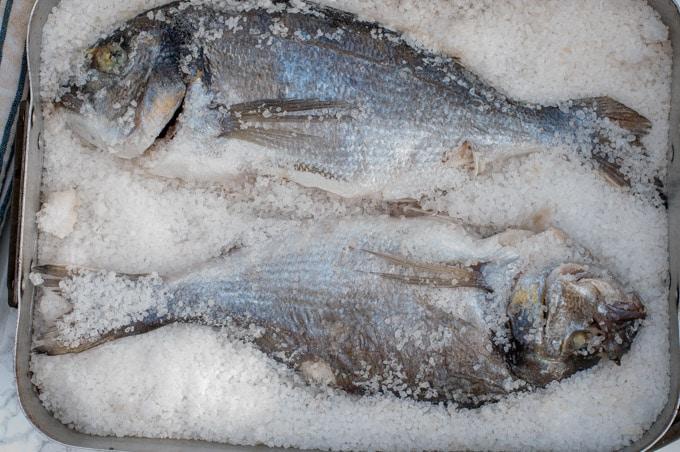 Sea bream laid over a layer of coarse salt